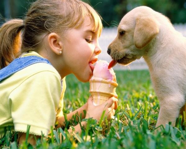 Девочка ест мороженое вместе с собакой