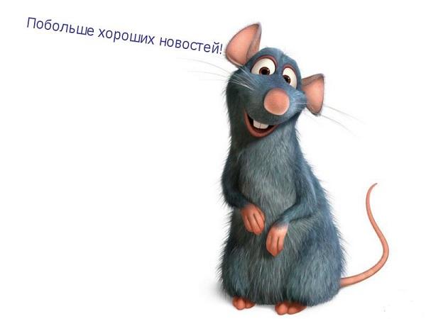 Novosty