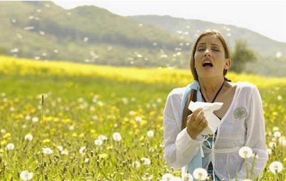 Allergiya