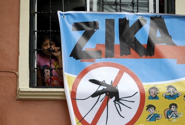 Плакат вирус Зика