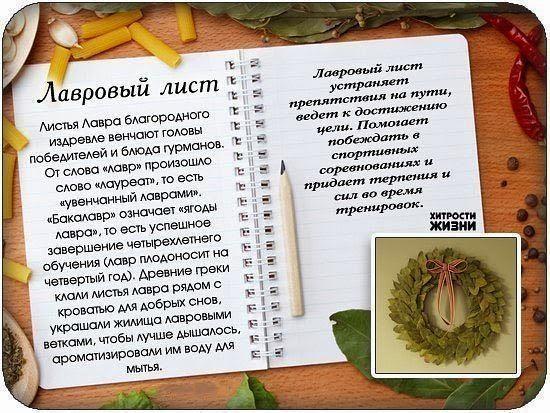 История лаврового листа