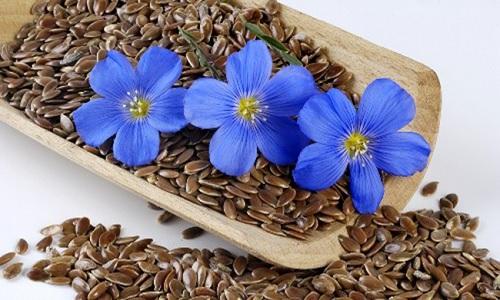 Льняные зерна и цветы