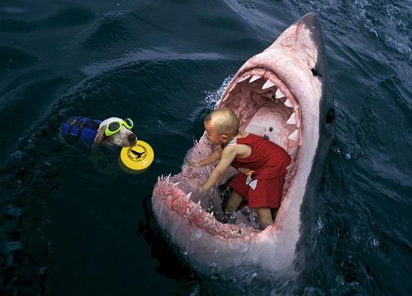 Дитя в пасти акулы