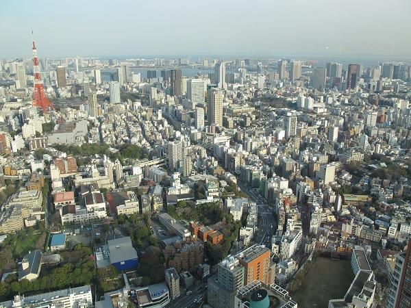Вид на Токио с вертолетной площадки