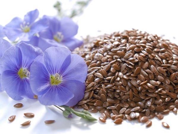 Льняное семя для очистки почек