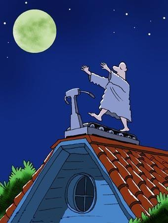 Лунатик на крыше дома