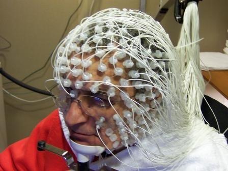 Исследование мозга в лаборатории