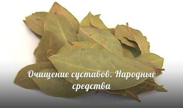 Очищение лавровым листом