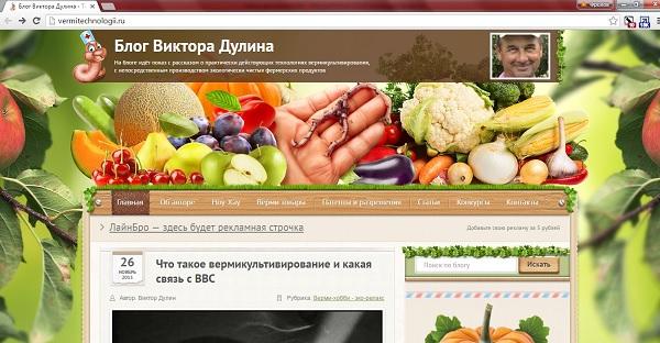 Блог Виктора Дулина