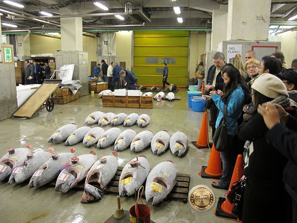 Туристы на аукционе тунца