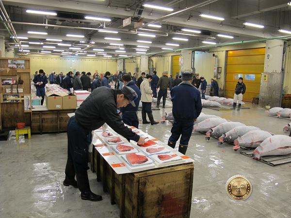 Стол для изучения образцов рыбы