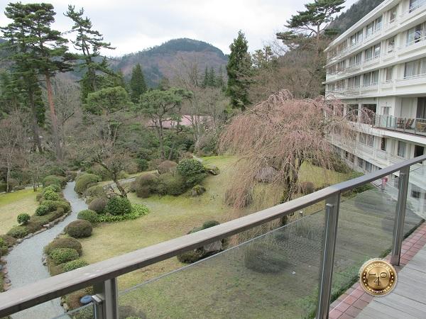 Вид на окрестности отеля в Хаконе