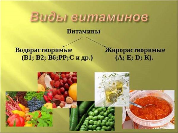 Виды витаминов в пище