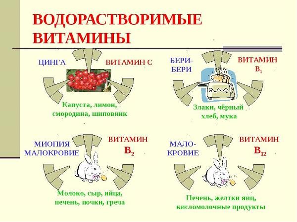 Виды водорастворимых витаминов
