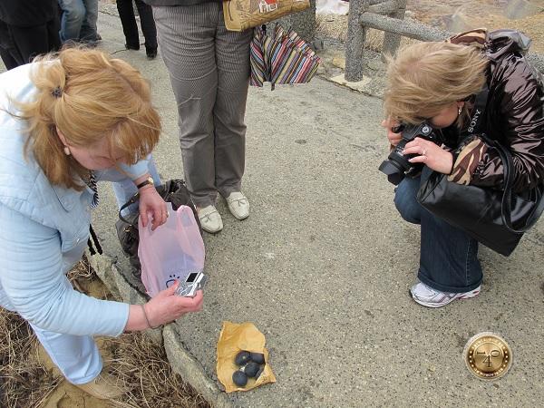 Фотосессия с яйцами