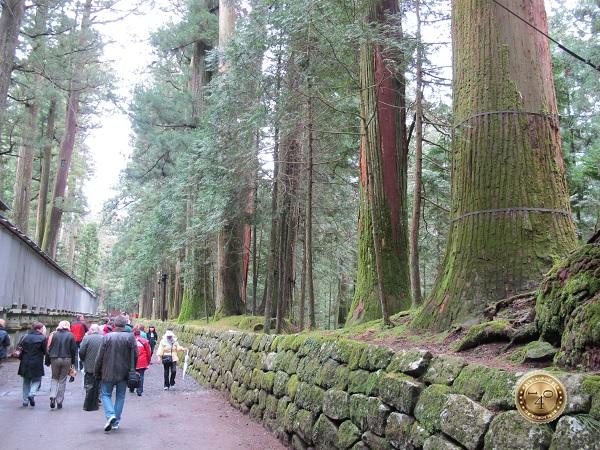 Дорога к храму Тосёга