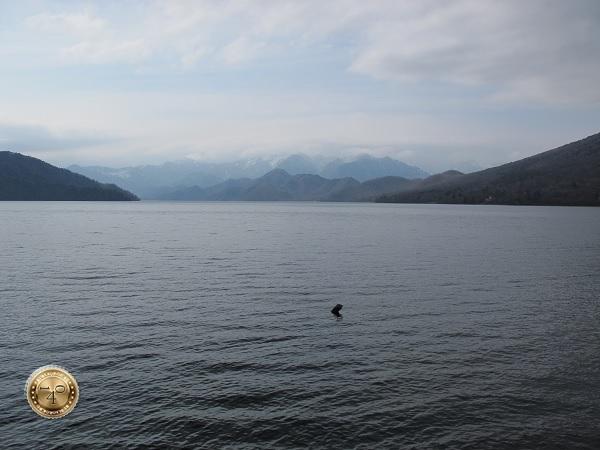 Горное озеро с Лохнесским чудовищем
