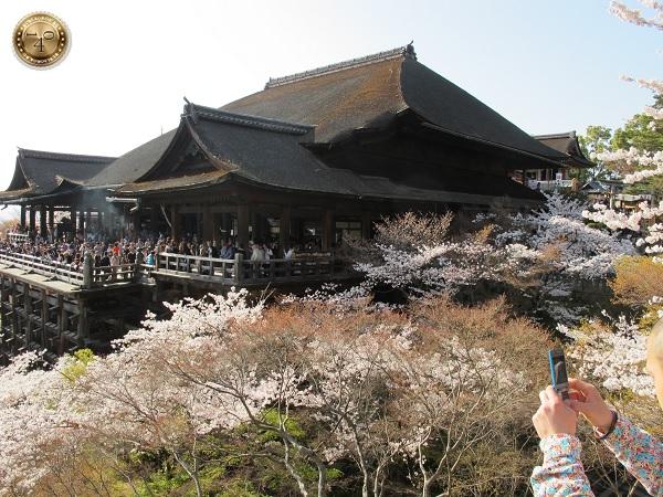 Вид на храм Чистой воды