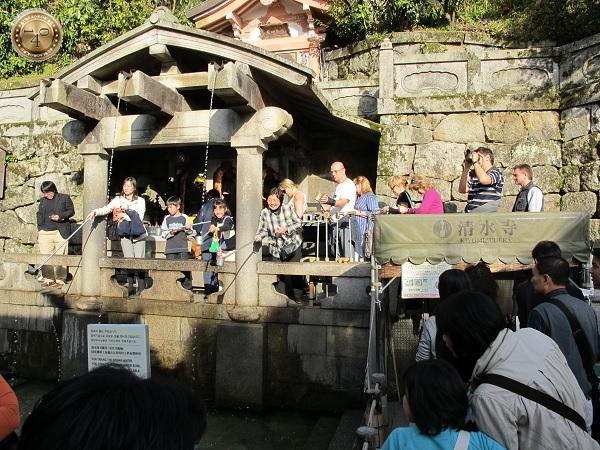 Сбор святой воды
