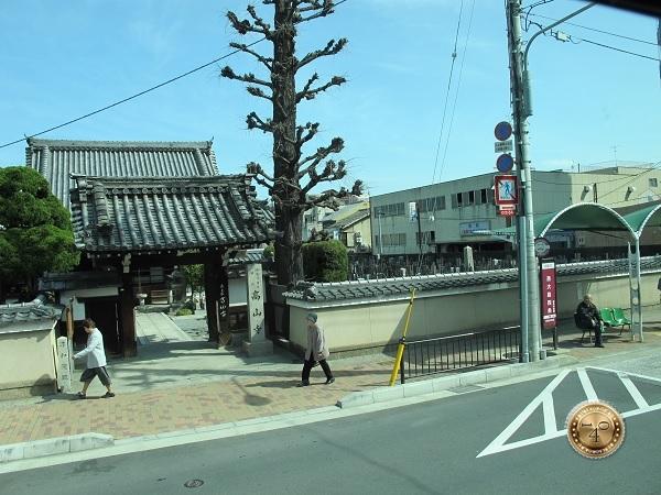 Вид из окна автобуса на Старый Киото