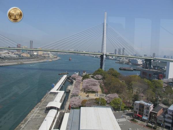 Вид на мост с колеса обозрения