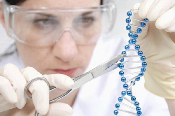 Генная терапия поможет забеременеть