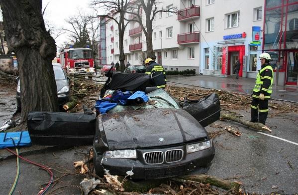 После урагана в Москве