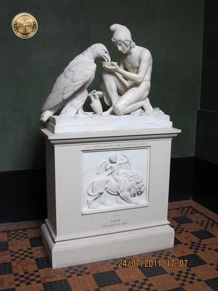 Амур и орел