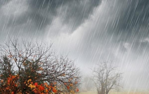 Осень и дождь