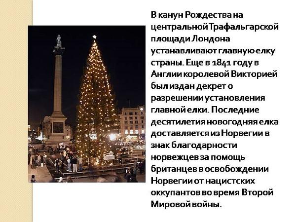 Норвежская ель на Трафальгарской площади в Лондоне