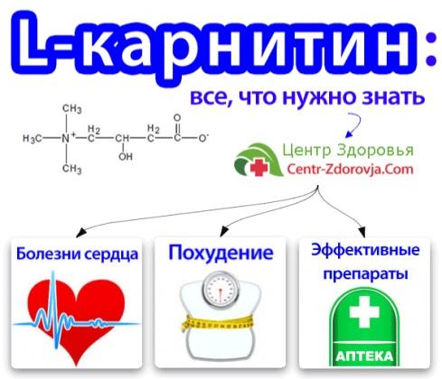 Л-карнитин и его свойства