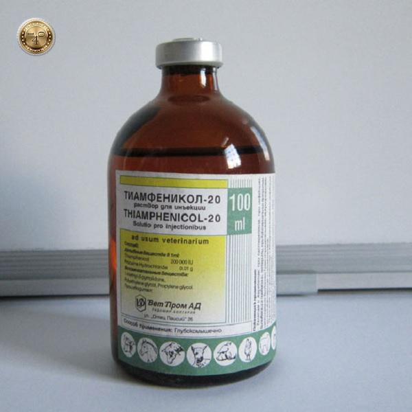 препарат тиамфеникол