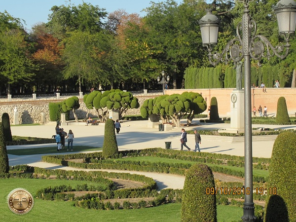 Декоративные деревья в парке Ретир