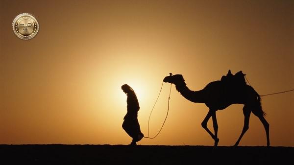 путник в пустыне