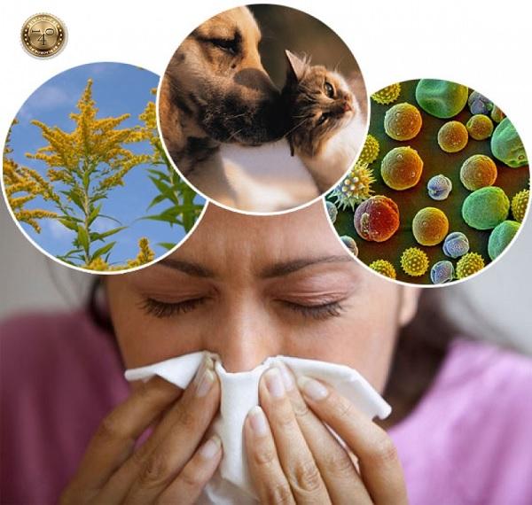 аллергия от кардиомагнила