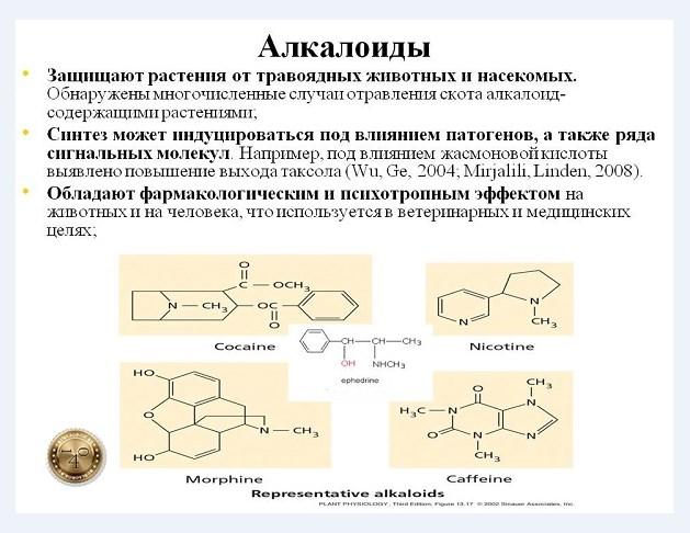 природные алколоиды