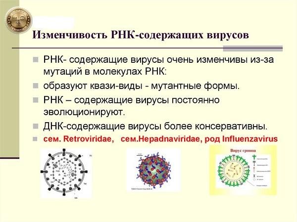 изменчивость вируса