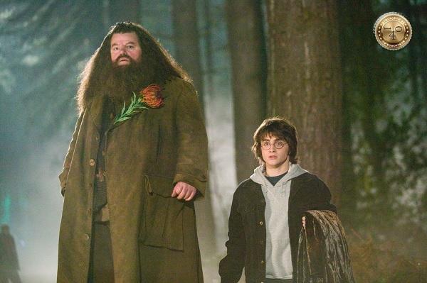 Хагрид и Гарри