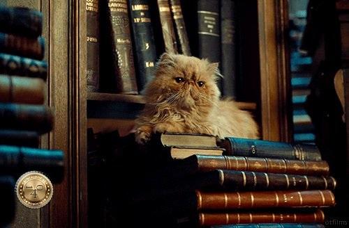 Живоглот на книгах