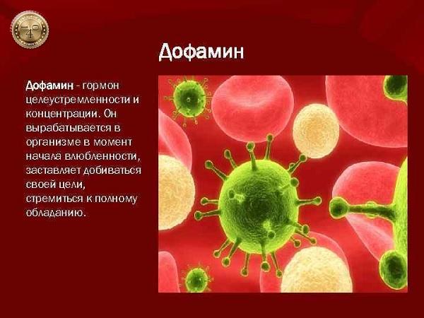 гормон дофамин