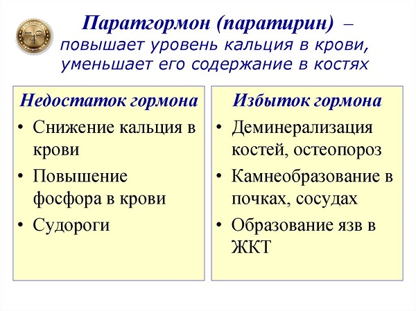 паратгормон и кальций