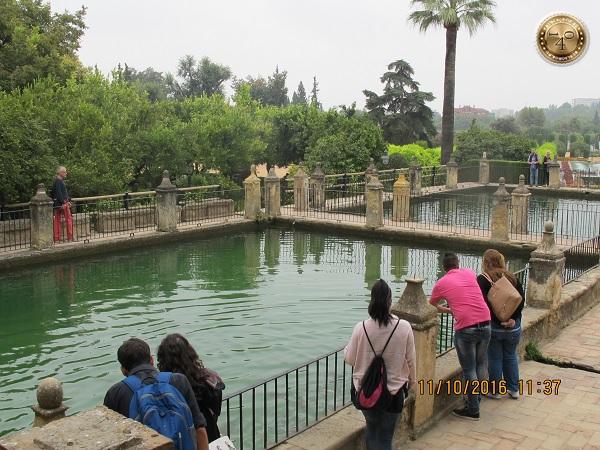 пруды с рыбами в парке Алькасар